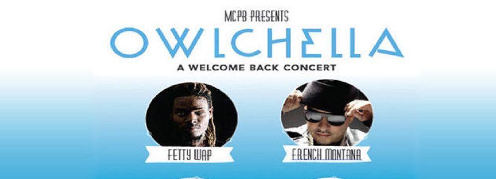 Owlchella concert